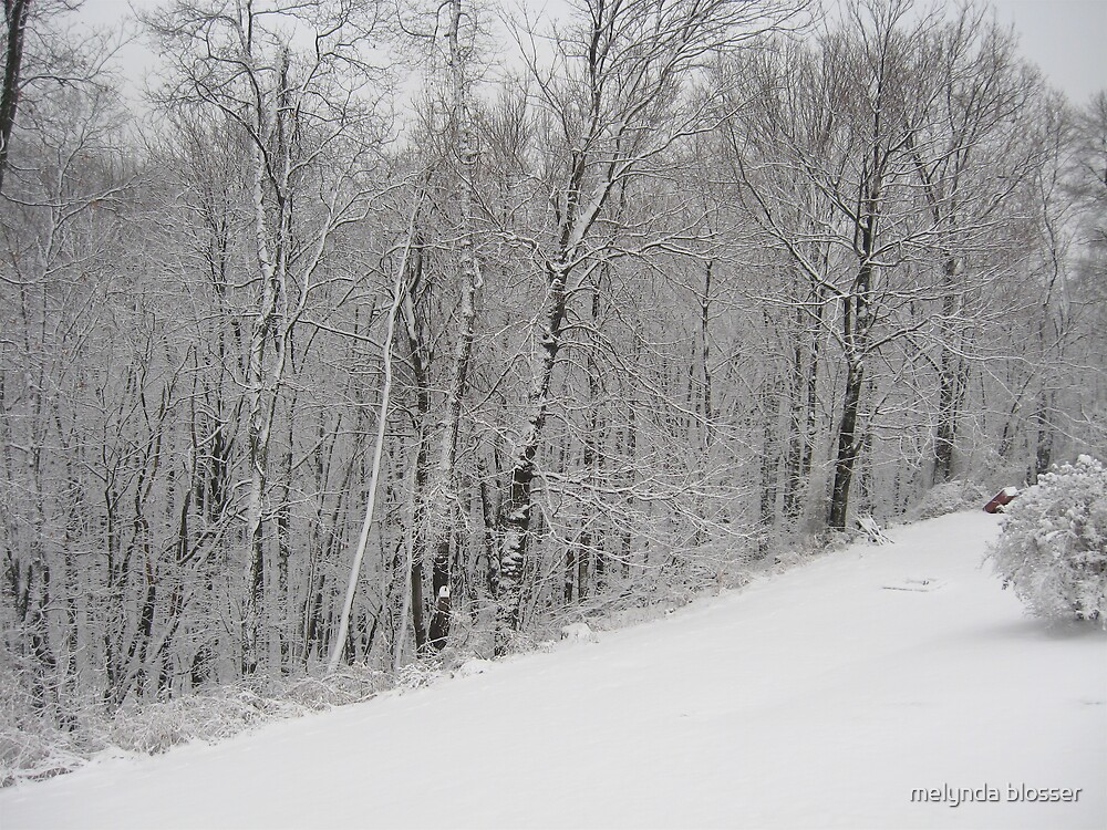 west virgina snow  by melynda blosser