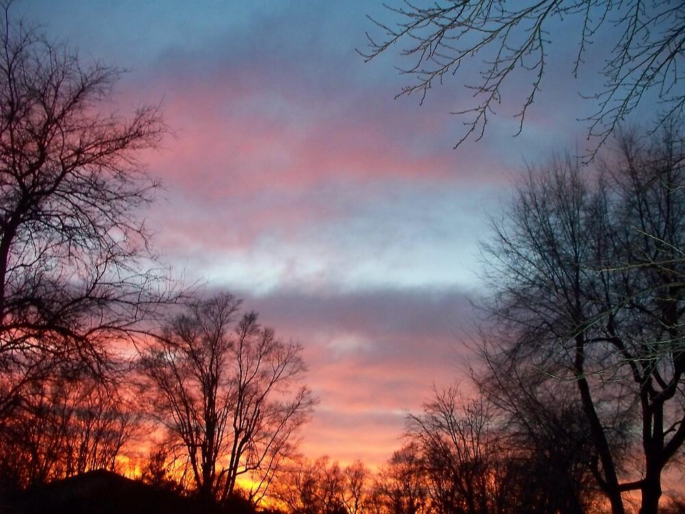 December Sunset by grannyjune