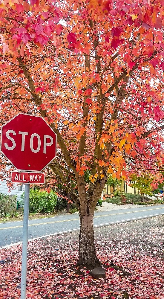 all way stop by Bruce  Dickson