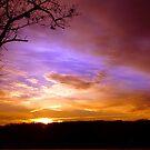 FIRST LIGHT by Spiritinme