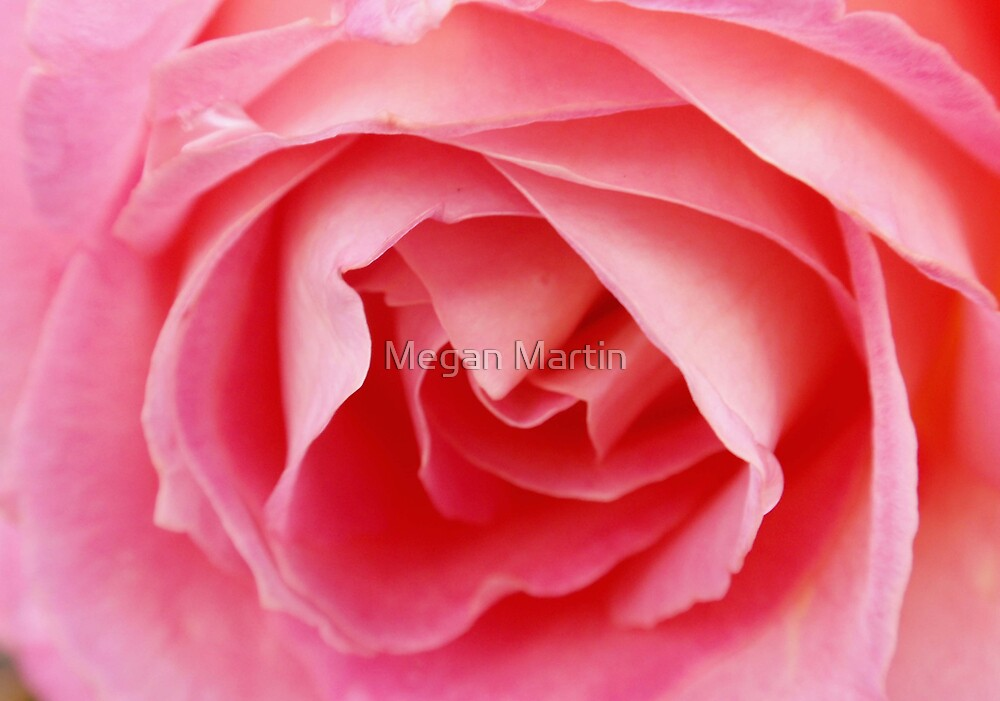 Pretty in Pink by Megan Martin