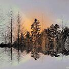 Glow ! by Elfriede Fulda
