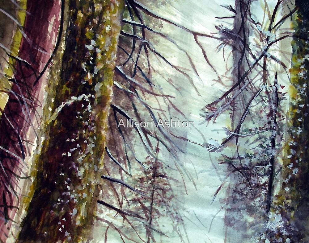 Forest Sings by Allison Ashton