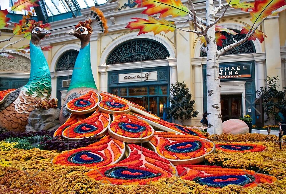 Peacock Pair by Linda Bianic