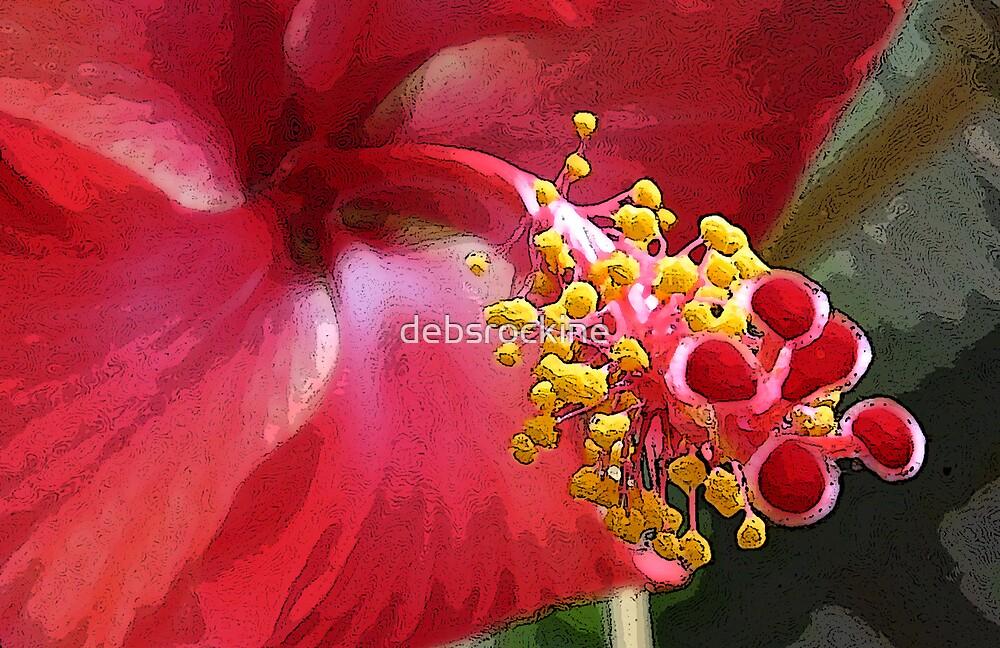 Hibiscus1 by debsrockine
