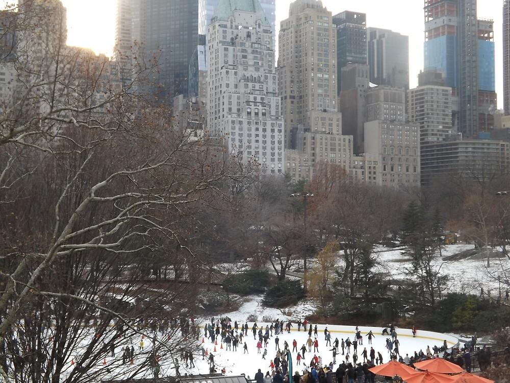 Central Park Skating, New York City  by lenspiro