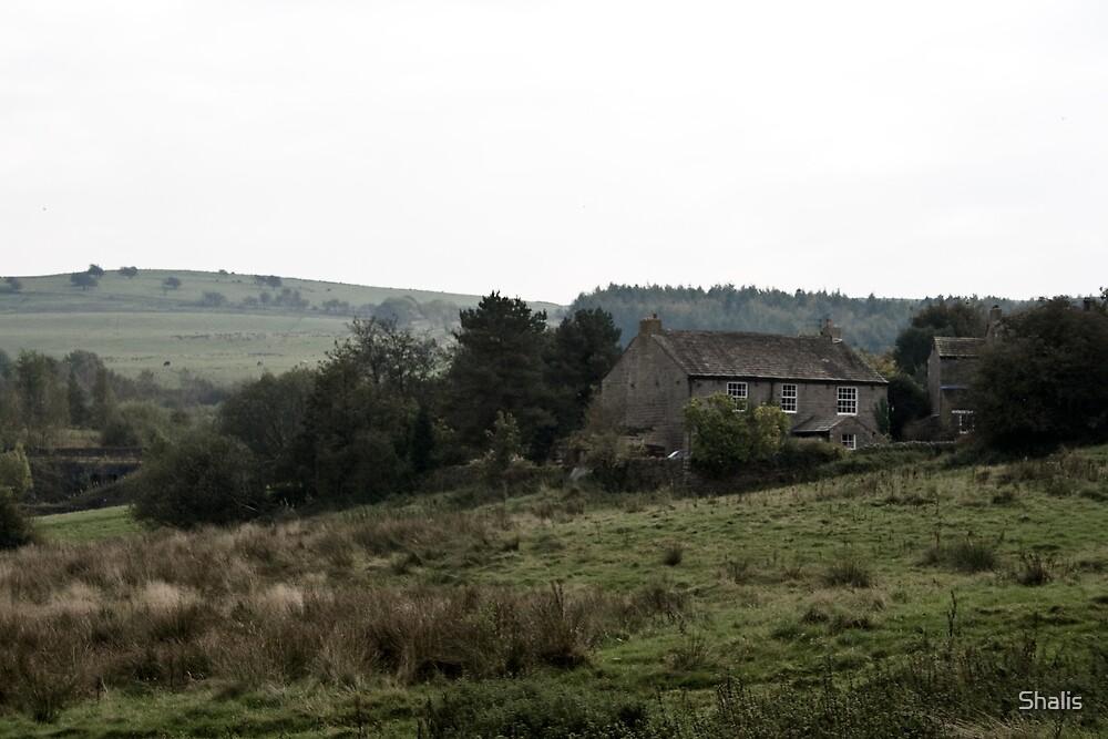 Farmhouse by Shalis