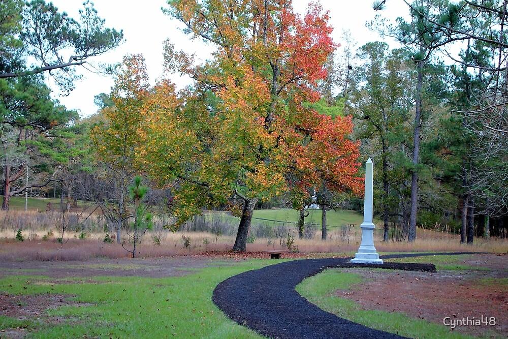 Battlefield History Trail by Cynthia48