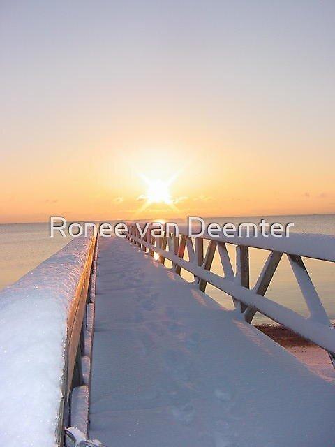 Snow and Sea by Ronee van Deemter
