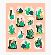 Terrariums - Cute little planters for succulents in repeat pattern by Andrea Lauren Photographic Print