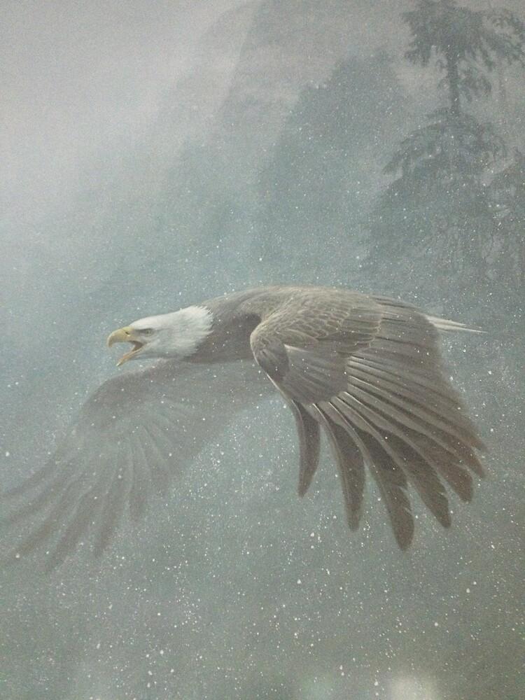 Flight of the Eagle :) by derek1023