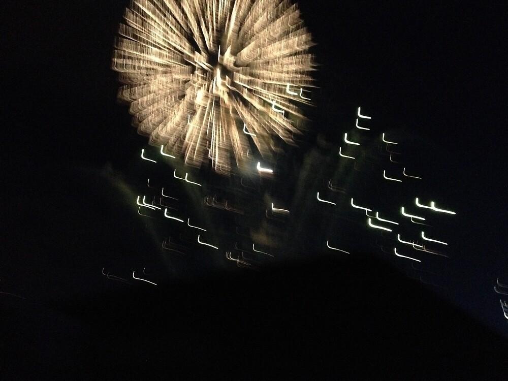 Fireworks :) by derek1023