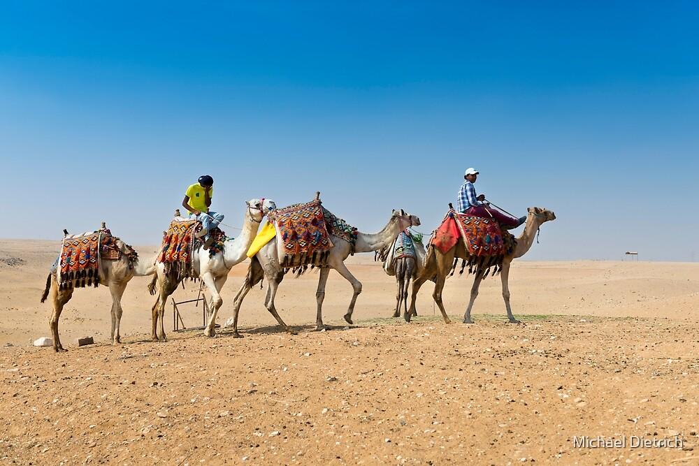 Ships of the desert, camel caravan by Michael Dietrich