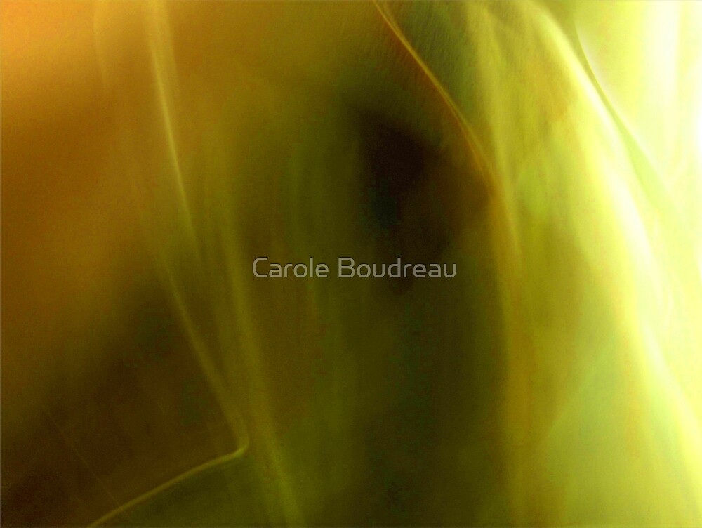Light ions by Carole Boudreau