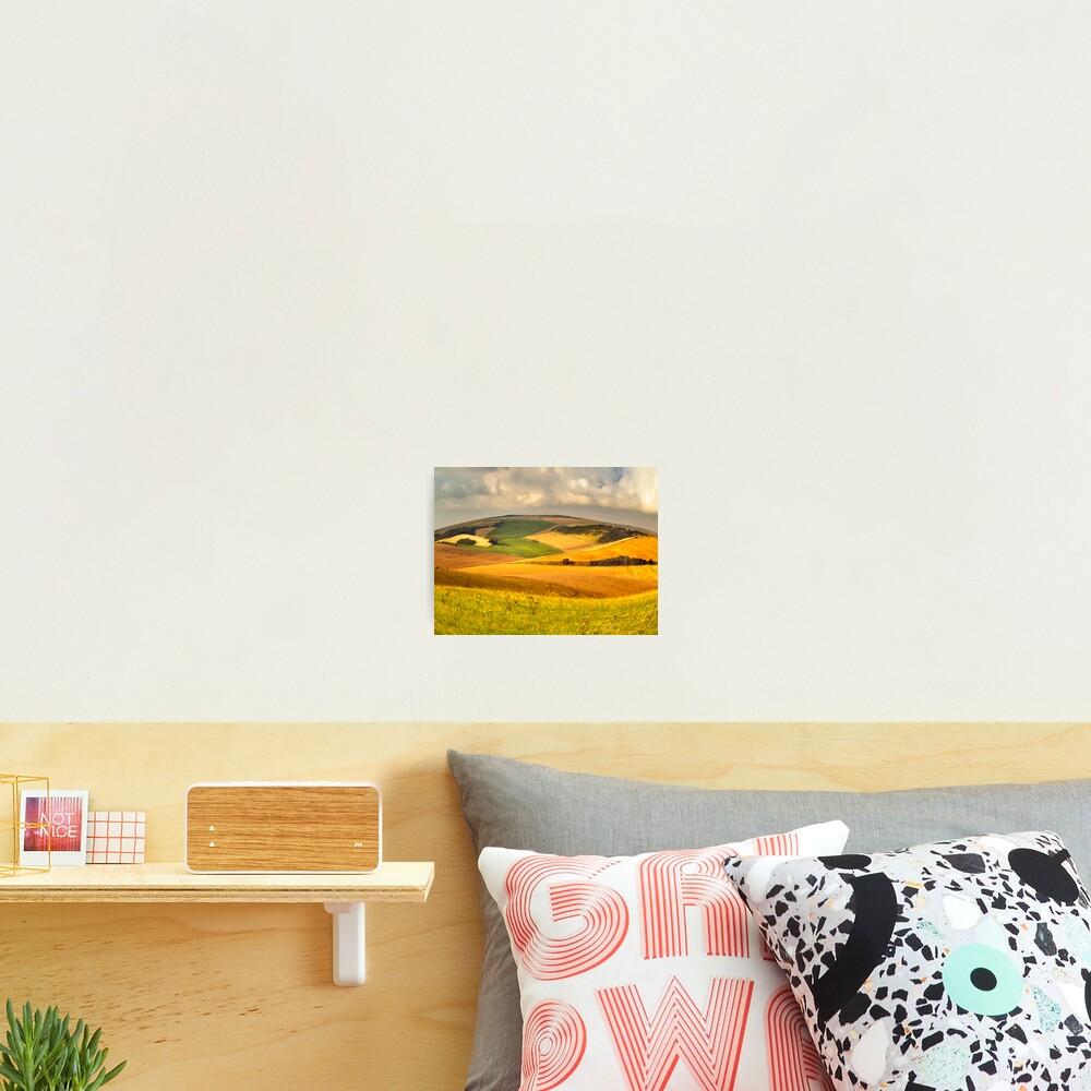 round landscape Photographic Print