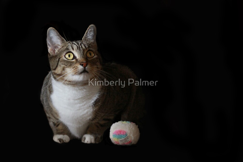Maggie and her toy by Kimberly Palmer