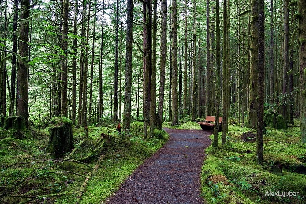 Bench in Magic Forest by AlexLyubar