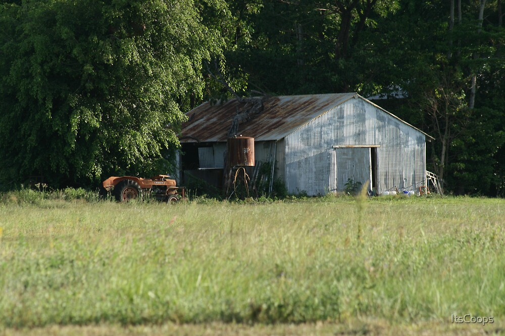 Old Sugar Cane Farm shed, Smithfield by ItsCoops