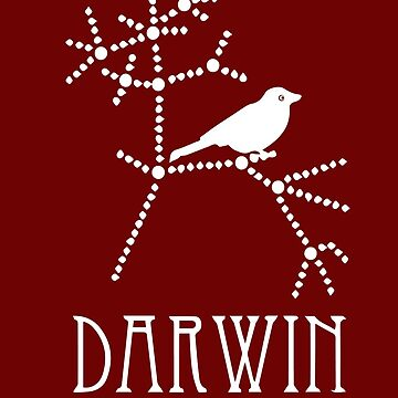 DARWIN FINCH by Parthis
