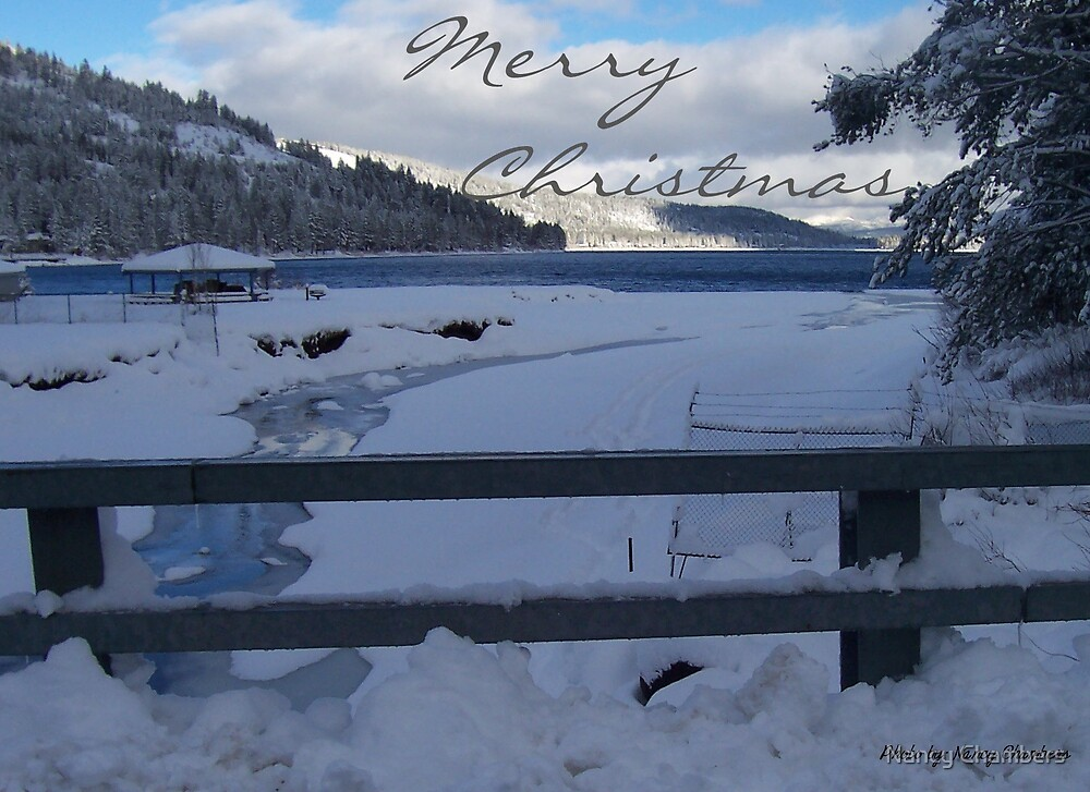 Merry Christmas by NancyC
