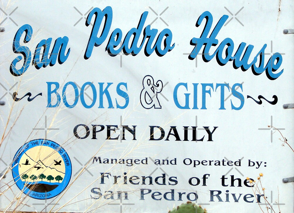 San Pedro River 17 by Kimberly Miller