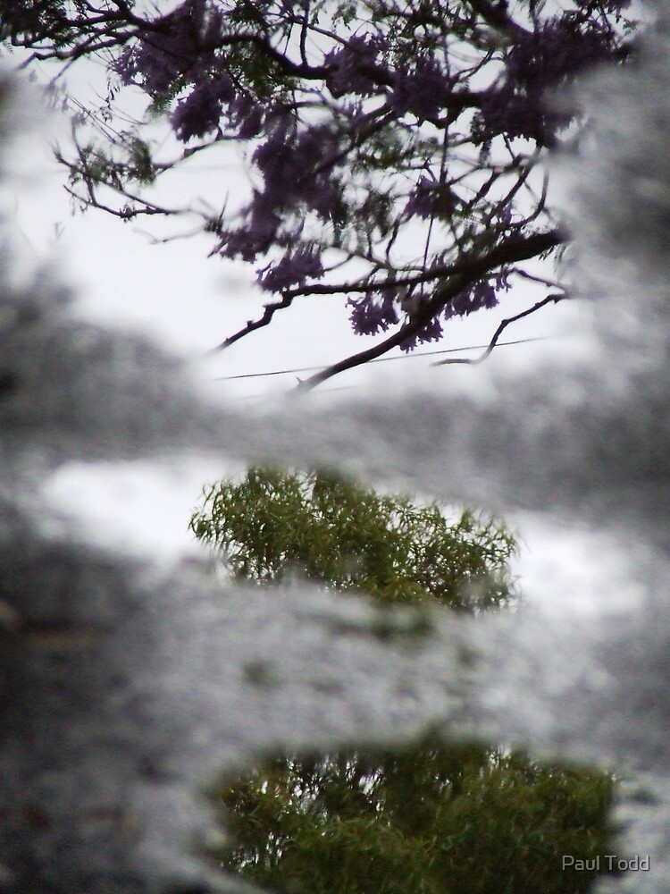 Tryptych Reflection by Paul Todd