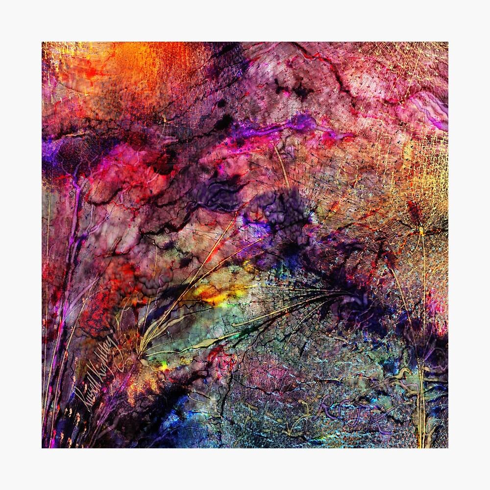Qualia's Bridge R Photographic Print