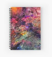 Qualia's Bridge R Spiral Notebook