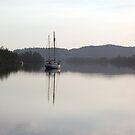 Dreamy Morn, Soft Light (Johnstone River, Innisfail, Qld. AU) by Kerryn Madsen-Pietsch
