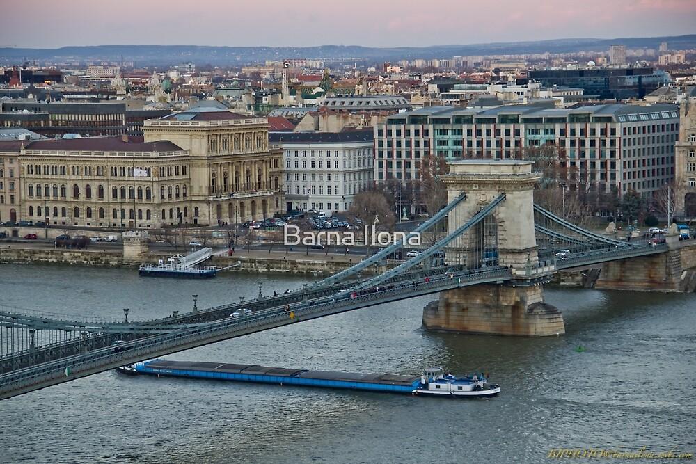 Chain Bridge Budapest Hungary by BIPHOTO