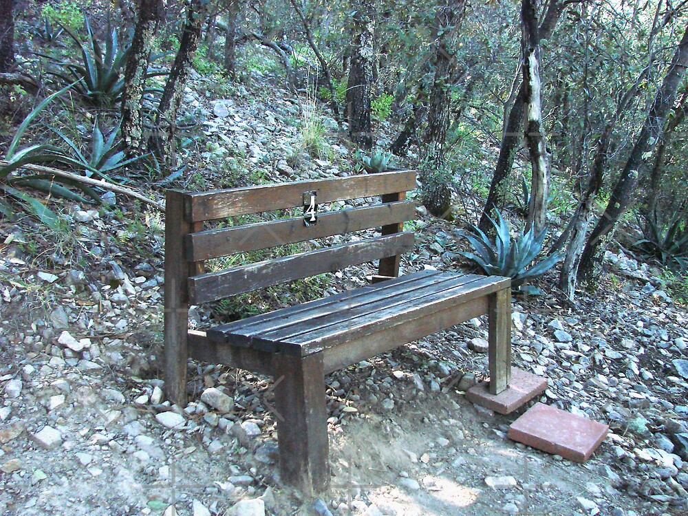 Ramsey Canyon Arizona - Bench 4 by Kimberly Miller