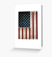 USA sleigh Greeting Card