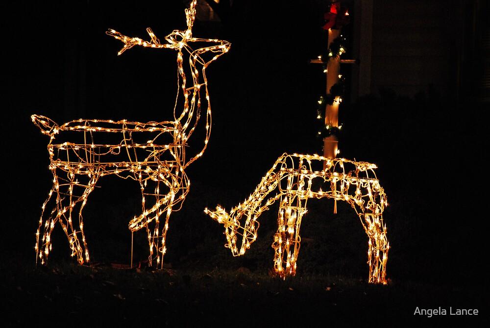 Reindeer Lights.... by Angela Lance