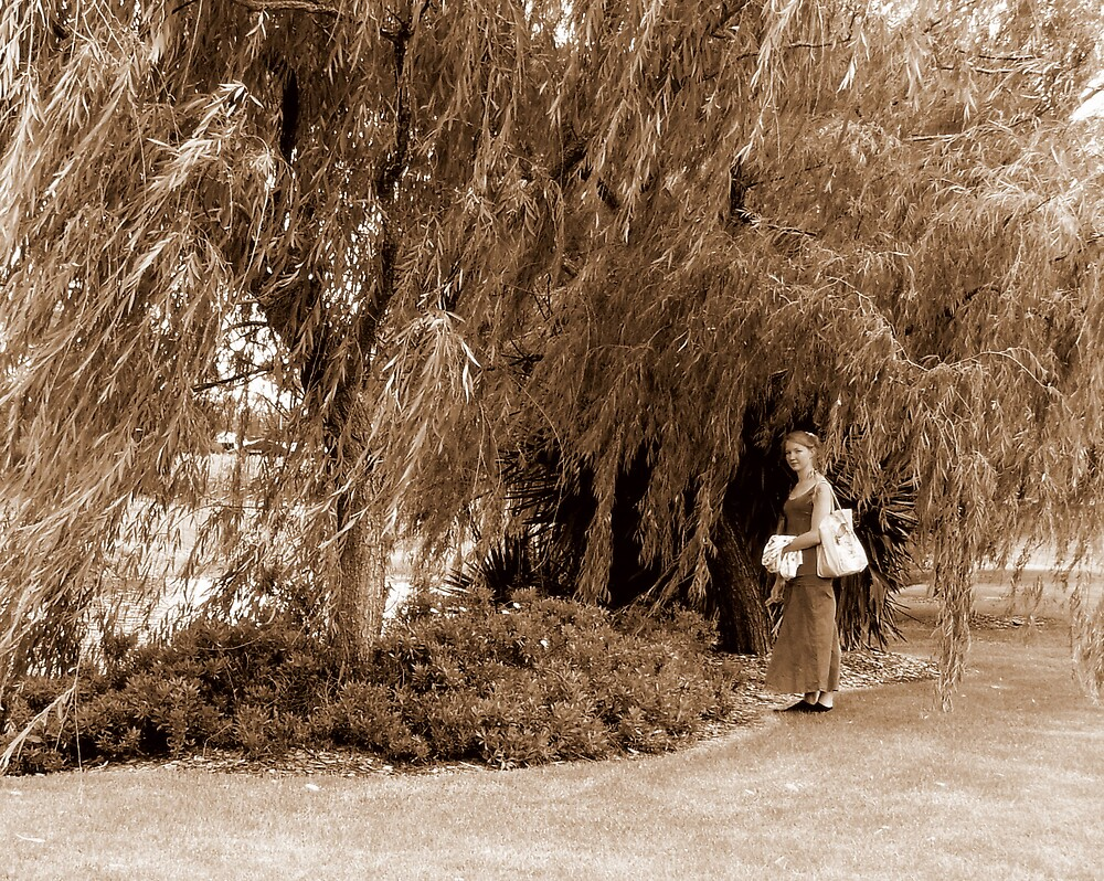 Under The Willow by Ragamuffin