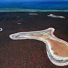 Salt Lakes...Shark Bay, Western Australia by Angelika  Vogel