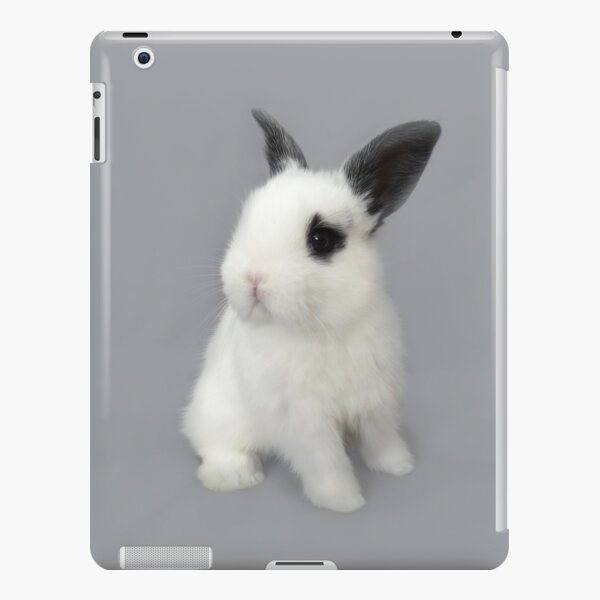Little Rabbit iPad Snap Case