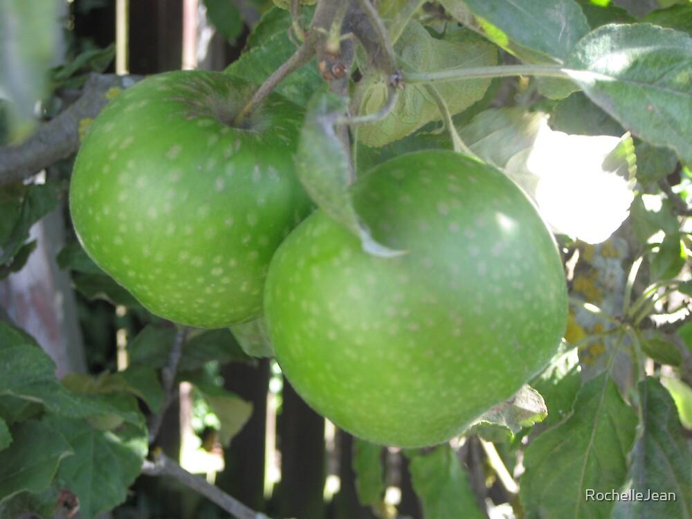 Green Apple by RochelleJean