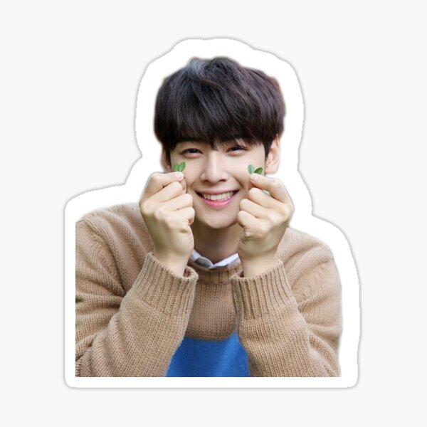 ASTRO Eun-woo sticker  Sticker