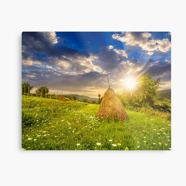 field with haystacks on hillside at sunset Metal Print
