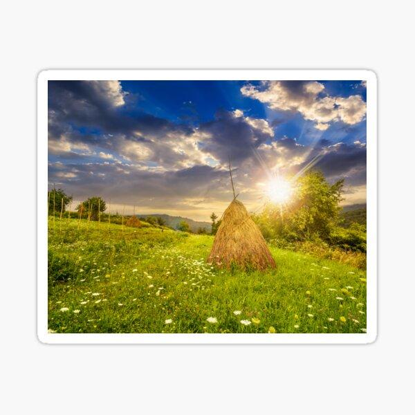 field with haystacks on hillside at sunset Sticker