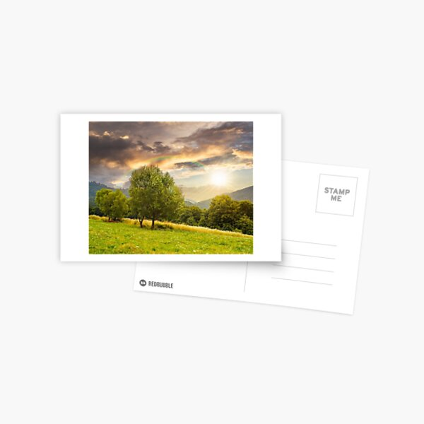 meadow near the forest in mountains at sunset Postcard