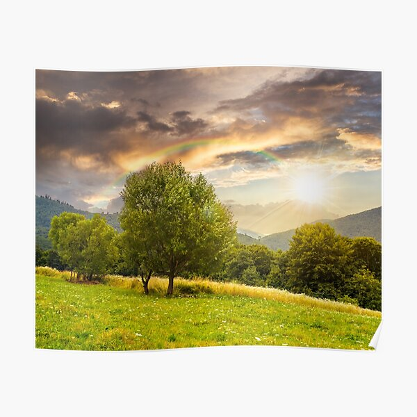 meadow near the forest in mountains at sunset Poster