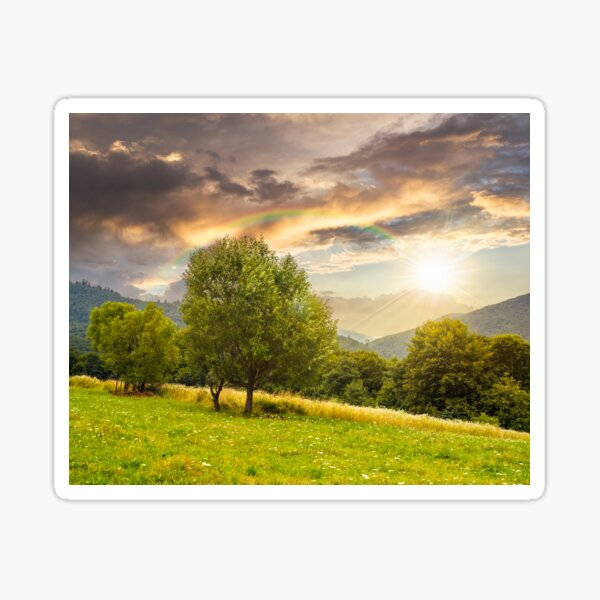 meadow near the forest in mountains at sunset Sticker