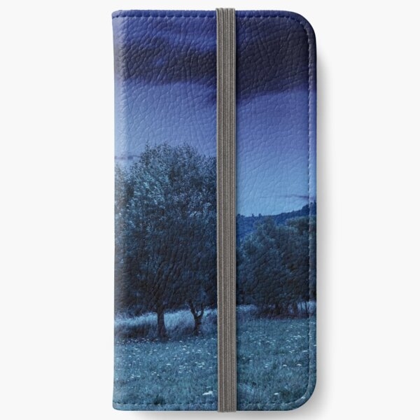 meadow near the forest in mountains at night  iPhone Wallet