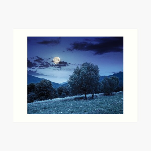 meadow near the forest in mountains at night  Art Print