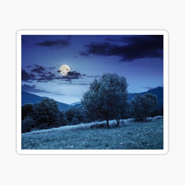 meadow near the forest in mountains at night  Sticker