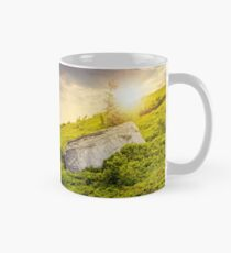 lonely conifer tree and stone at sunset Mug