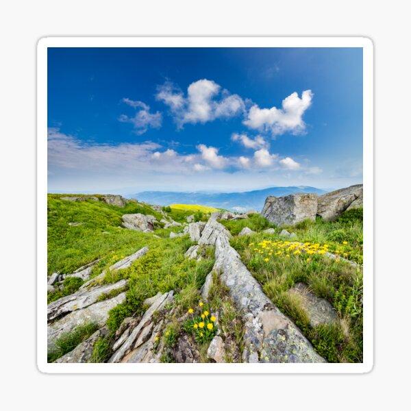 dandelions among the rocks on hillside Sticker