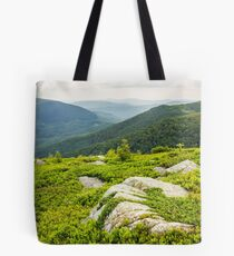 few trees and stones on hill side Tote Bag