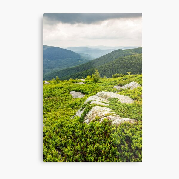 few trees and stones on hill side Metal Print